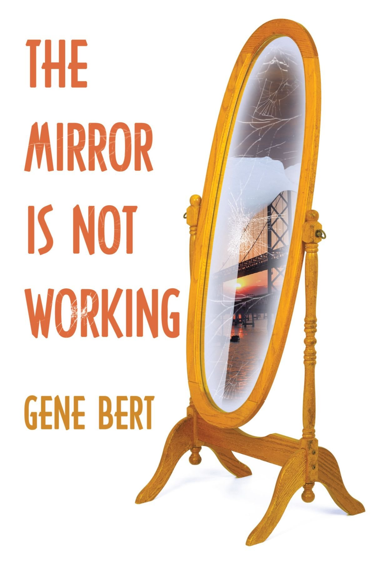 Read Online The Mirror is Not Working PDF