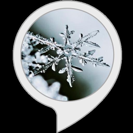 Winter Screensaver (Screensaver Screen Saver)