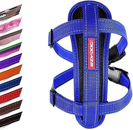 EzyDog – Placa de pecho arnés, Azul, XXL: Amazon.es: Productos ...