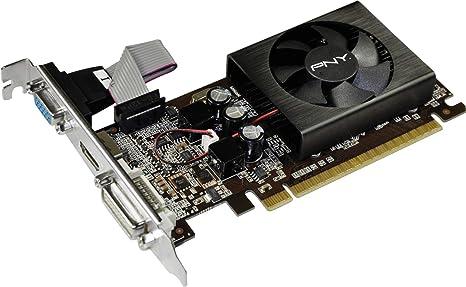 Amazon.com: PNY GeForce G210 1 GB pcie-ddr3 adaptador de ...