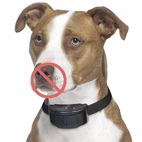Amazon.com : Petacc Anti Barking Collar Electric Stop Barking Dog Devices No Harm E-Collar Training 7 Levels Warning Beep and Shock, Perfect for 15-120 lb ...
