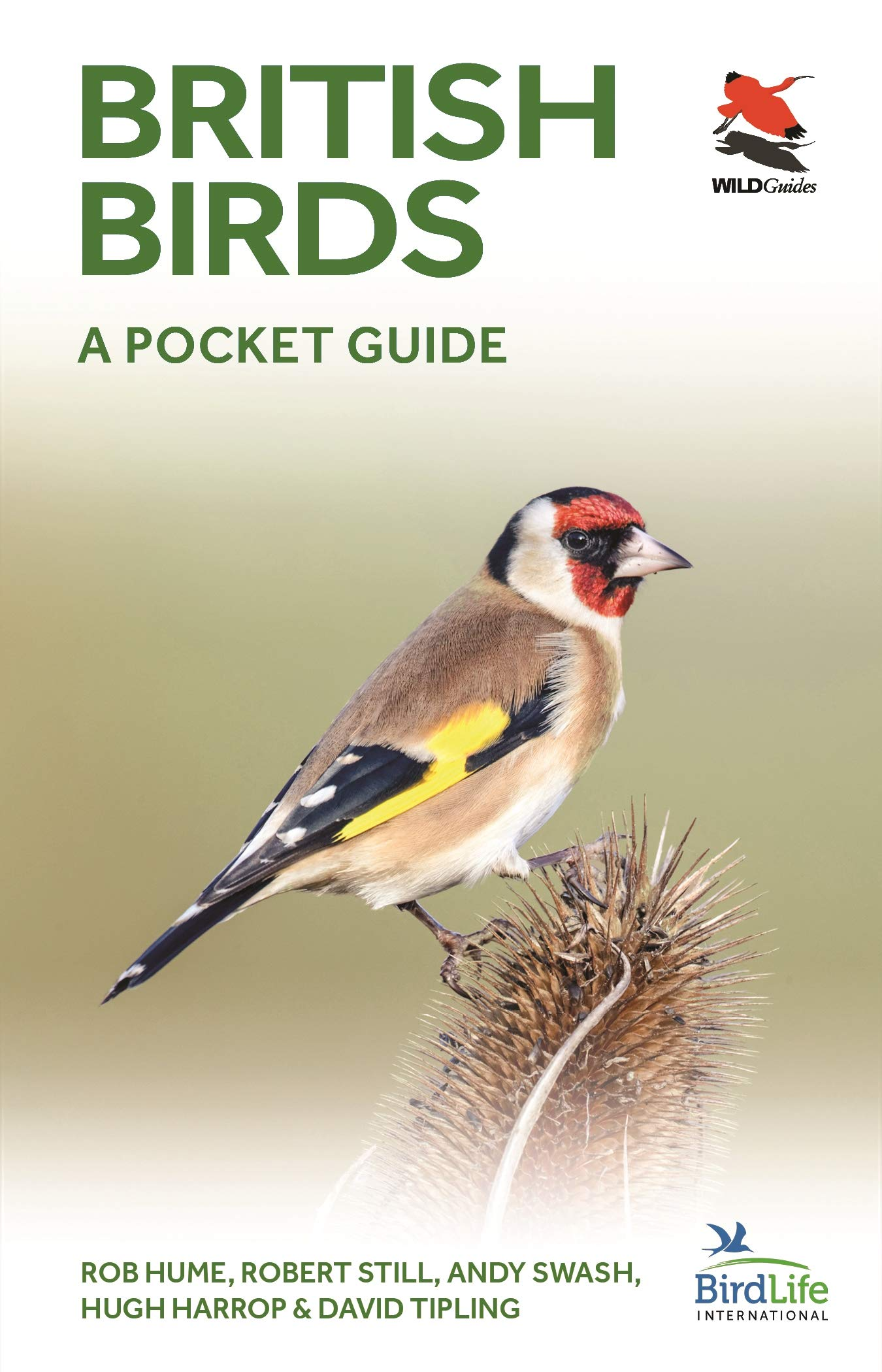 British Birds: A Pocket Guide (WILDGuides) (Britain's Wildlife):  Amazon.co.uk: Rob Hume, Robert Still, Andy Swash, Hugh Harrop, David  Tipling: 9780691181677: Books