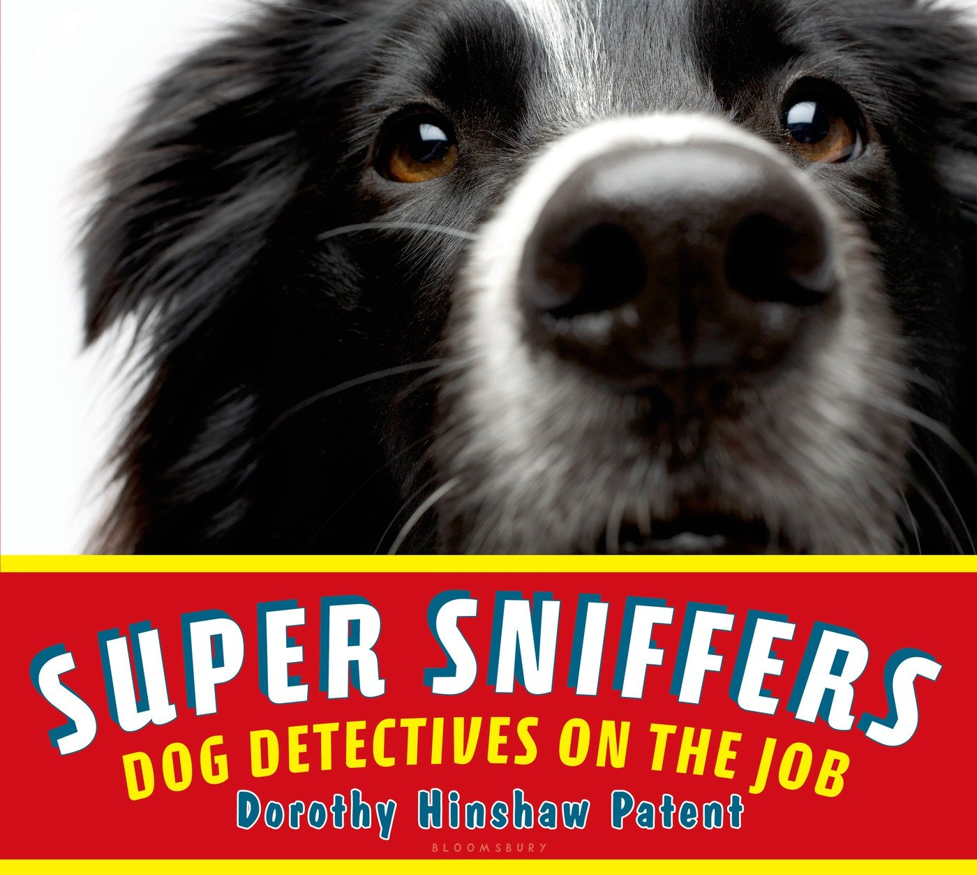 Super Sniffers Dog Detectives Job product image