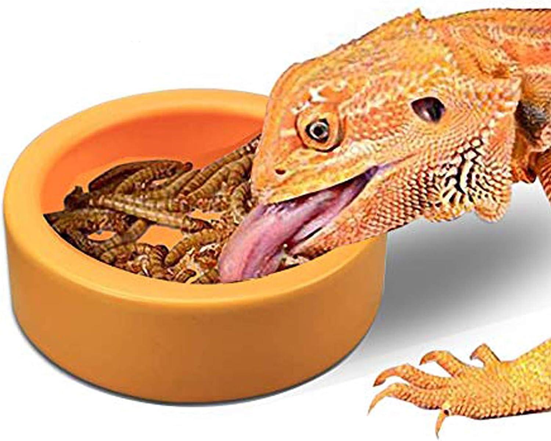 TDPET Ceramic Mini Reptile Worm Dish - Lizard Escape Proof Feeding Bowl Circular