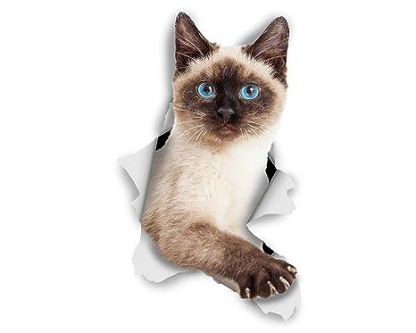 Winston & Bear Adhesivos de gato 3D - Pack 2 - Gato siamés Breakout Stickers para