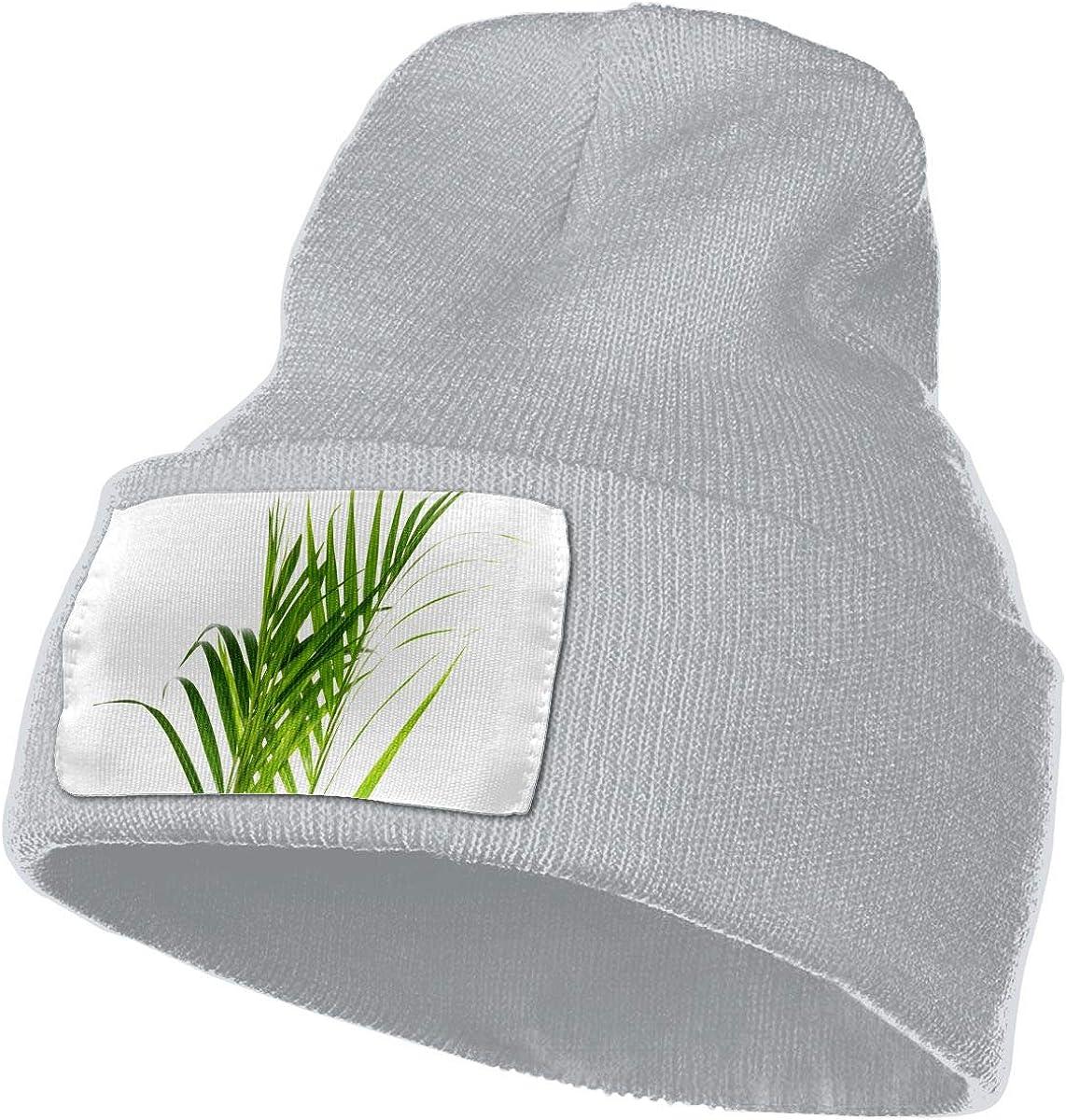 QZqDQ Malibu Coconut Tree Unisex Fashion Knitted Hat Luxury Hip-Hop Cap