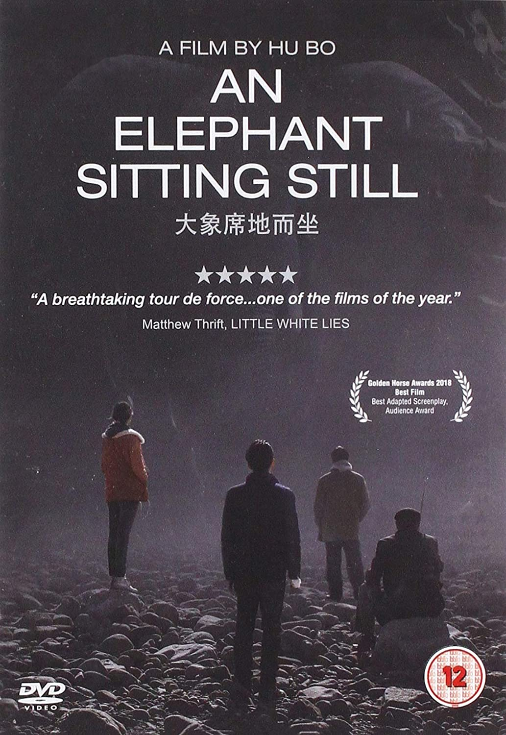 Image result for an elephant sitting still""