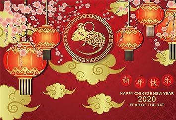 Chinese Lantern Festival 2020.Amazon Com Yeele New Year 2020 Photography Backdrop 10x8ft