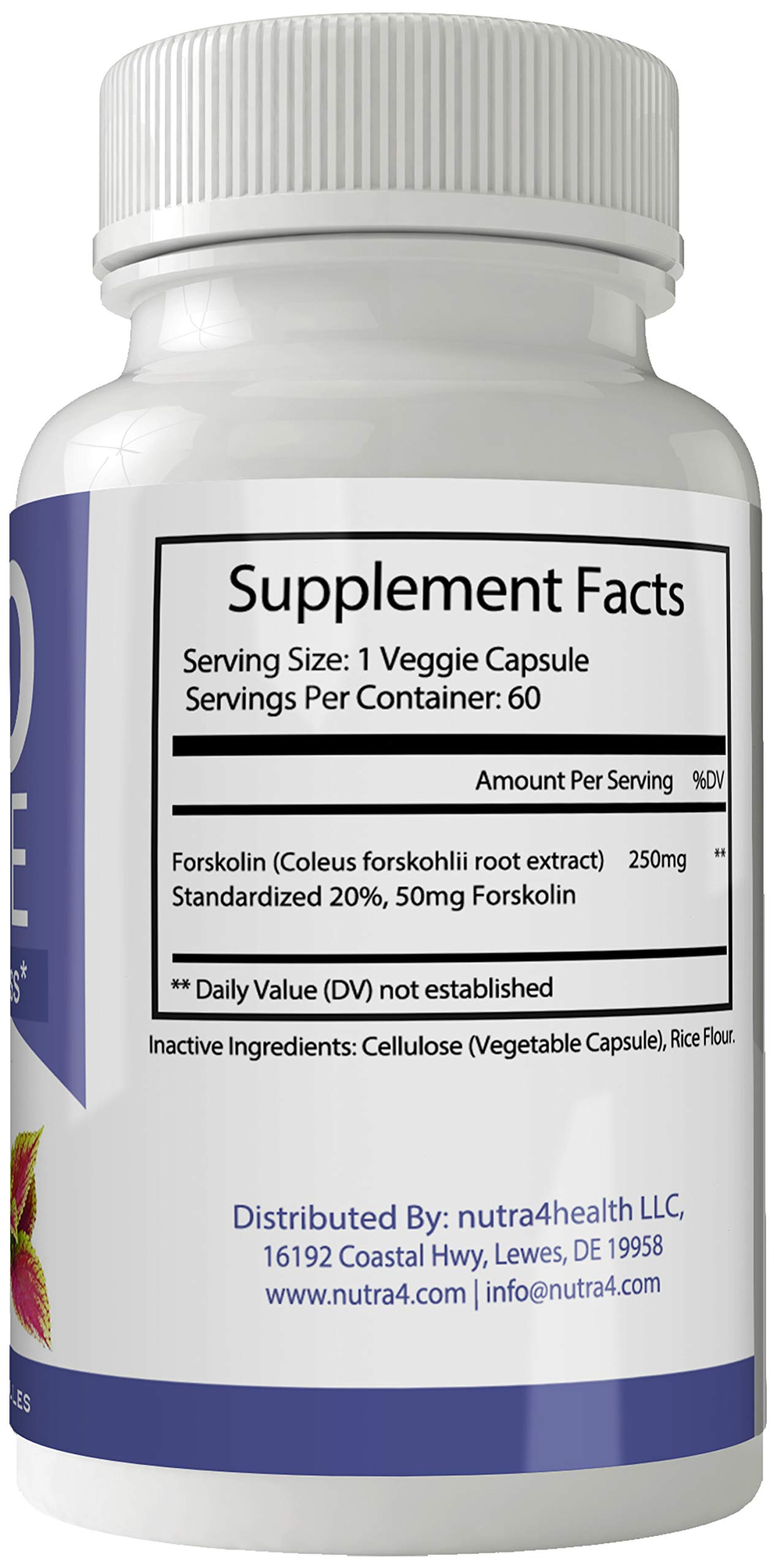 Keto Absolute Supplement Forskolin for Weight Loss Capsules with Natural High Quality Pure Forskolin Extract Diet Pills by nutra4health LLC (Image #2)