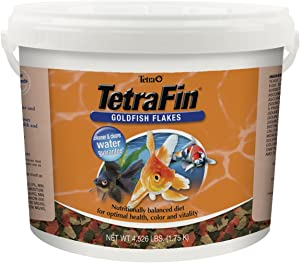 TetraFin Balanced Diet Goldfish Flake Food for Optimal Health