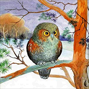DIY 5D Painting by Numbers Kits for Adults Bird Art Crystal Rhinestone Embroidery Easy Cross Stitch Arts Craft Supply Canvas for Home Kitchen Hotel Salon Wall Décor 30X30cm
