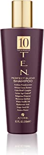 product image for TEN Perfect Blend Shampoo, 8.5-Ounce