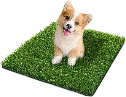 """Artificial Grass for Dogs 1/"""" 3ft x 5ft Pet Grass Puppy Potty Training Grass Pee"""