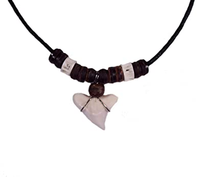 Amazon real shark tooth necklace jewelry products jewelry real shark tooth necklace aloadofball Gallery