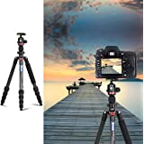 """3WE Lightweight Carbon Fiber Dslr Tripod, 360 Ball Head, 65"""" Ultra Compact for Traval and Work,for Canon, Sony, Nikon, Olympus Devices,Camera Compact and Video Camera,Black"""