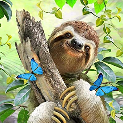 YIPINQUAN Jigsaw Puzzles 500 Pieces for Adults and Kids Butterfly and Sloth Wooden Puzzle Educational Toys Home Decor Wall Art: Toys & Games