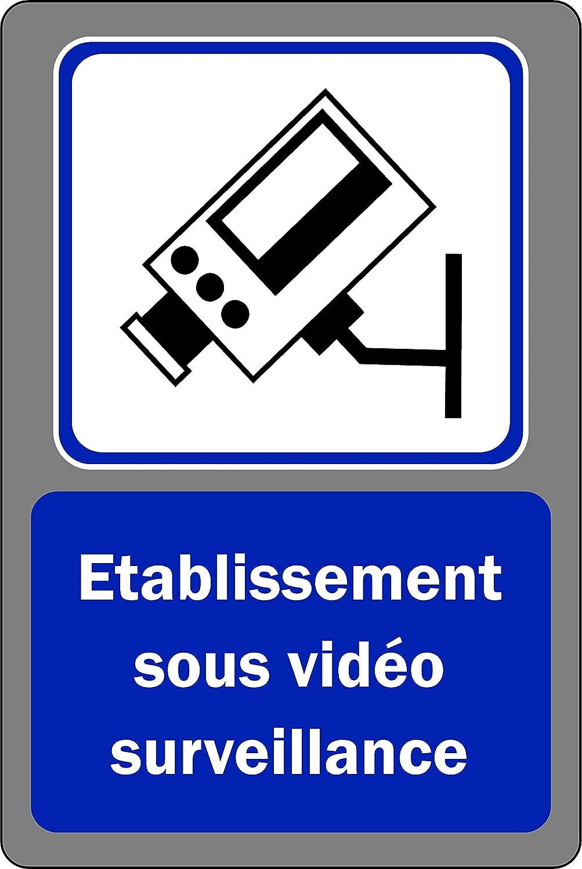 Etablissement sous Vid/éo Surveillance Panneau vid/éo Surveillance Autocollant 300mm x 200mm