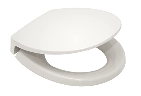 TOTO SS113#01 Transitional SoftClose Round Toilet Seat, Cotton ...