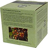 12 Ounces (0.75 lb) Greenwill Organic Soapberry/Soap Nuts with Wash Bag - Use Real Soapberry!