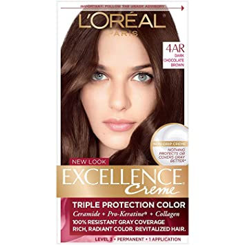 Amazon Com L Oreal Paris Excellence Creme Permanent Hair Color 4ar Dark Chocolate Brown 100 Gray Coverage Hair Dye Pack Of 1 Chemical Hair Dyes Beauty,Blue And White Porcelain Decorating Ideas