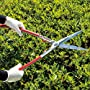 Highest Rated Hedge Clippers & Shears