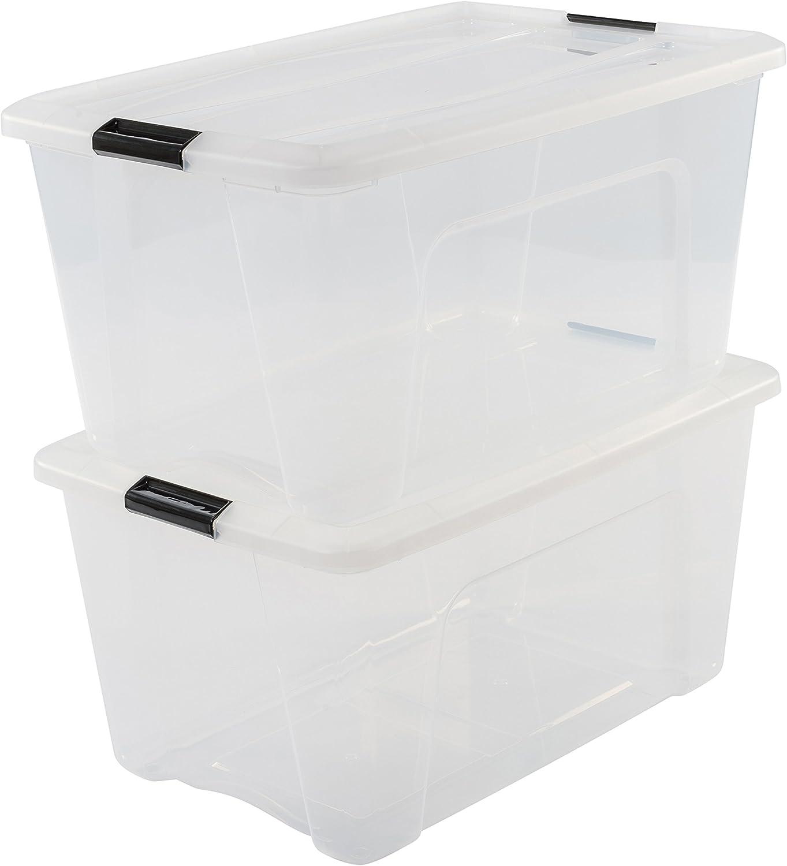 Iris Ohyama NTB-45 X2 Clear - lote de 2 cajas apilables de almacenamiento, Transparente, 45 L