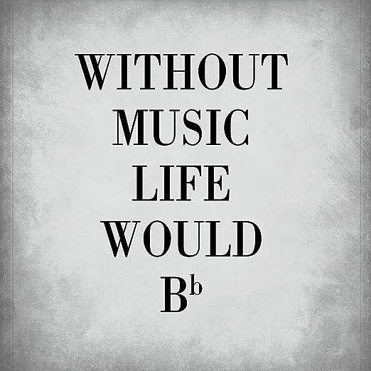 sin música la vida sería B