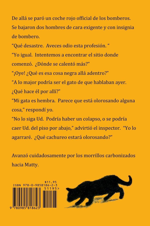 Matty, la gata detective (Spanish Edition): Joanne Blondin, Marilyn Wheeler, Anne M. C. Chavez: 9780985818623: Amazon.com: Books