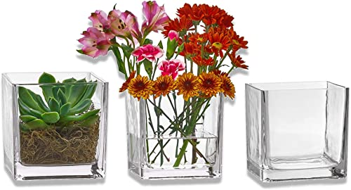 PARNOO Set of 3 Glass Square Vases 5 x 5 Inch Clear Cube Shape Flower Vase, Candle Holders – Perfect as a Wedding Centerpieces, Home Decoration