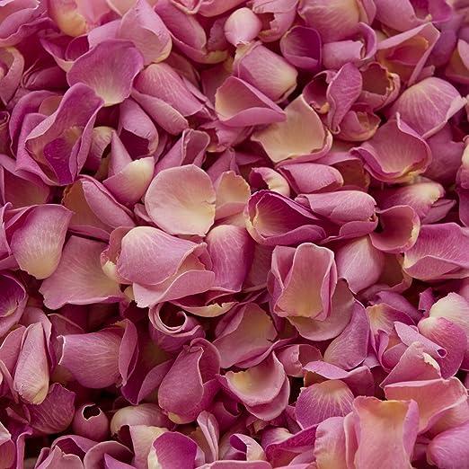 Confeti de pétalos de rosa biodegradable para bodas (Antiguo, 2 ...