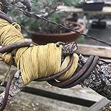 Bonsai Tree Raffia - Branch Protection - Wiring Aid from BonsaiOutlet