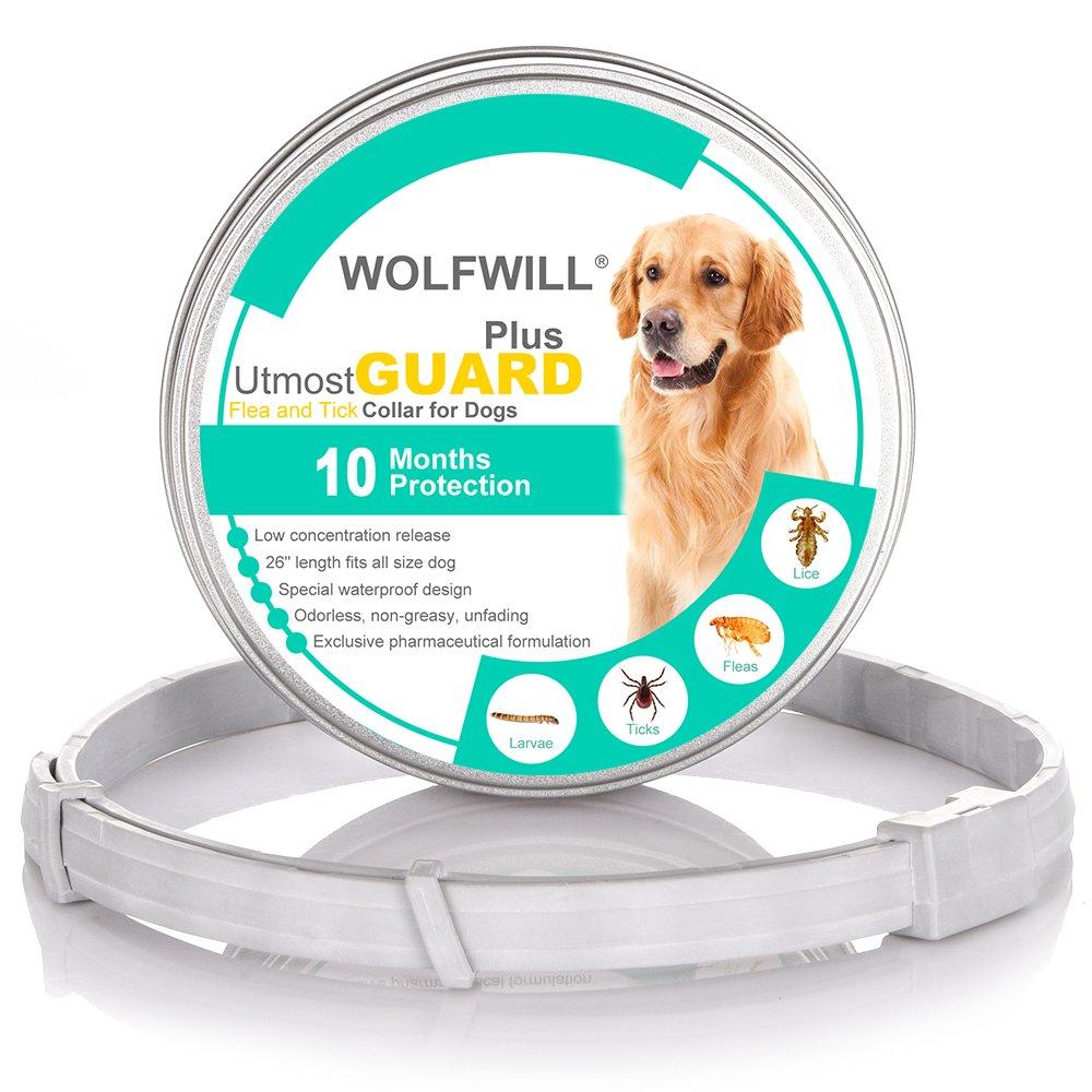 Wolfwill Collier Anti-Puce et Tique pour Chien/Chat 10 Mois de Durée de Protection et Prévention Contre Les Puce et Tiques-66cm pour Chien de Petit à Grand Taille