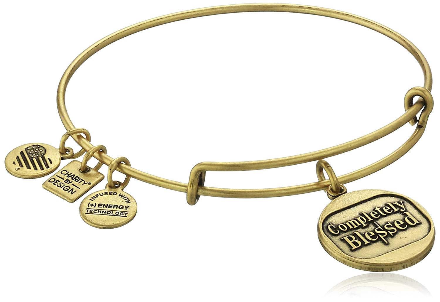1864e2d080f Amazon.com  Alex and Ani Charity By Design Completely Blessed Rafaelian  Gold Bangle Bracelet  Jewelry