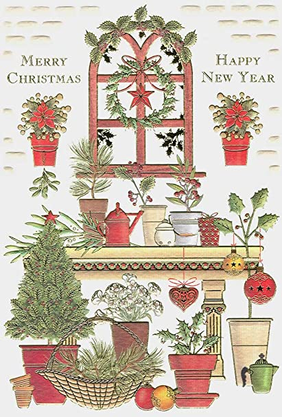 Amazon Com Christmas Plants Boxed Embossed Christmas Cards