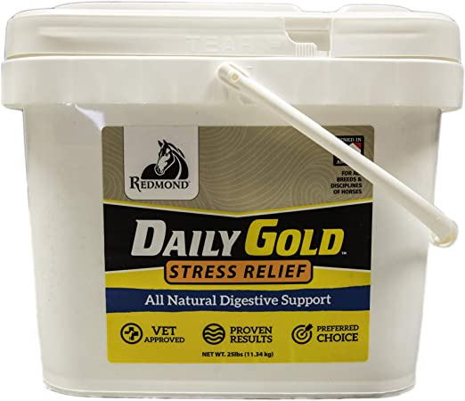 REDMOND Daily Gold Natural Healing Clay for Gastric Ulcers in Horses (Stress Relief Pre-Race Paste)