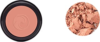 product image for Gabriel Cosmetics, Blush (Petal), 0.17 Ounce,Natural, Paraben Free, Vegan, Gluten-free, Cruelty-free, Non GMO.