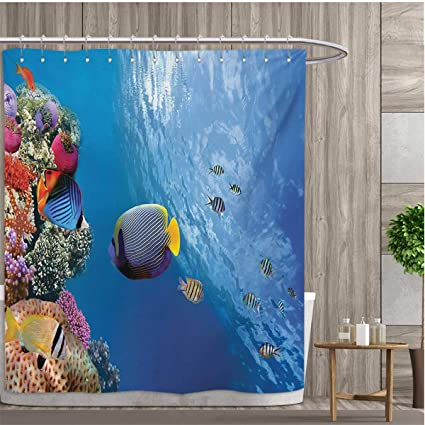 Smallfly Under The Sea Bathroom Decor Set With Hooks Tropical Emperor Long  Living Angelfish In Underwater