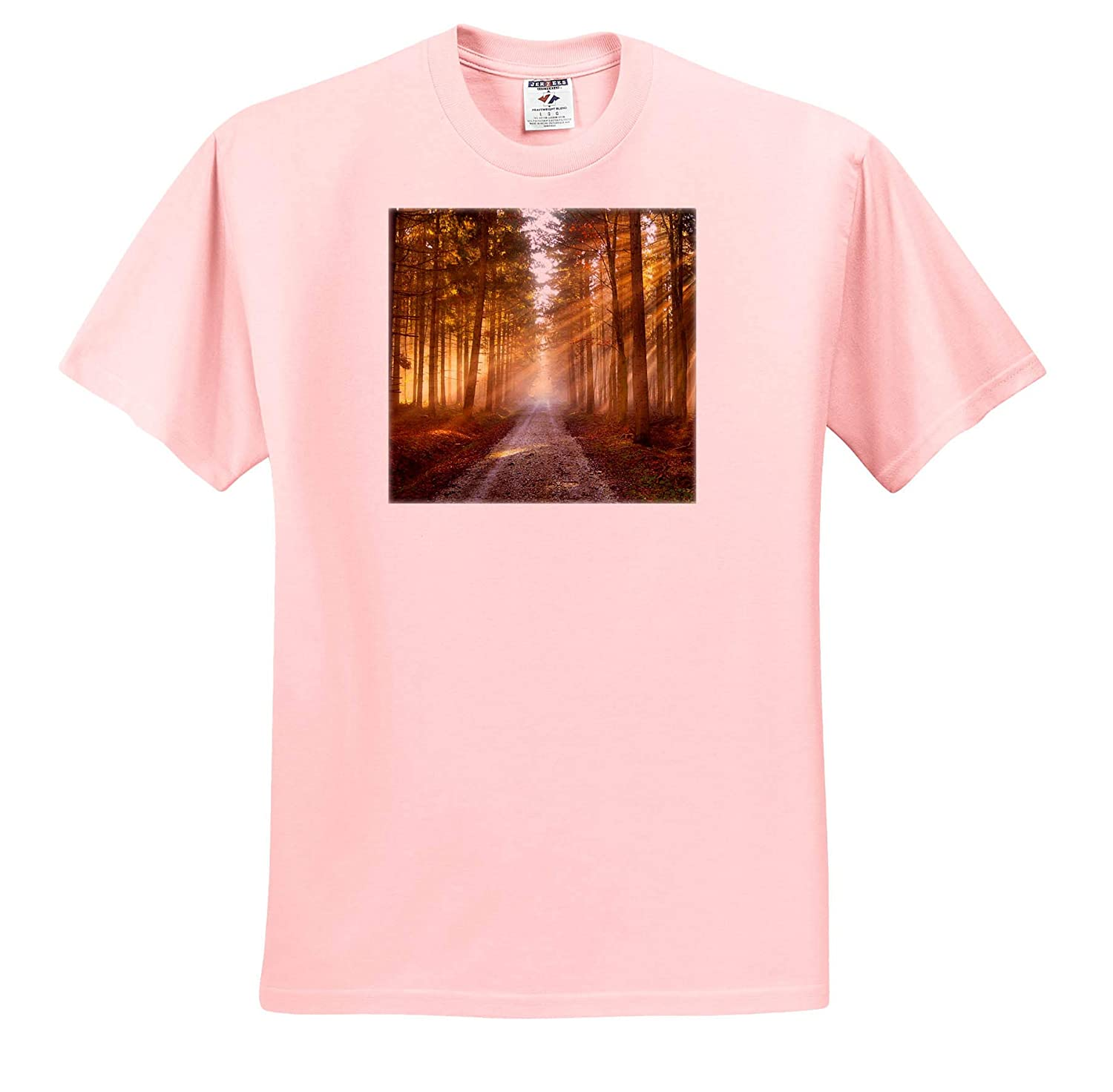3dRose Stamp City Nature Photograph of Sunlight Through The Pines at Double Trouble State Park - T-Shirts