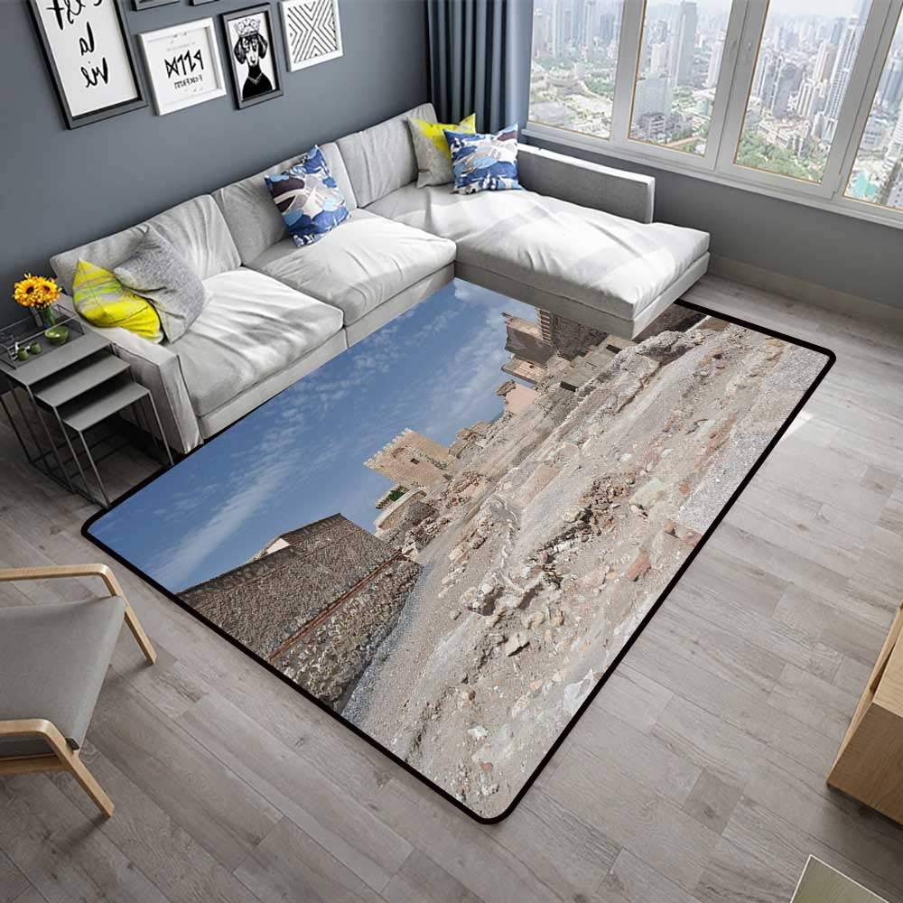 Amazon.com: Abstract Design Area Rug alcazaba Fortress in ...