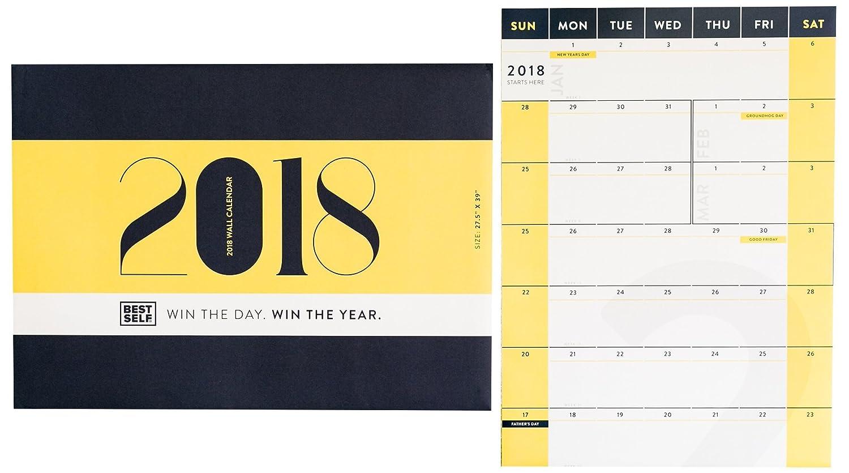 Amazon.com : Daily Planner - BestSelf Co. 2018 Wall Calendar - 27.5 ...
