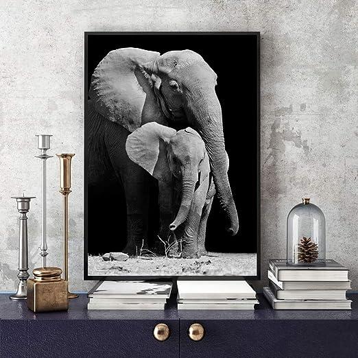 Amazon Com Jhljianju 1 Panel Afrika Vahsi Hayvan Portre Portre
