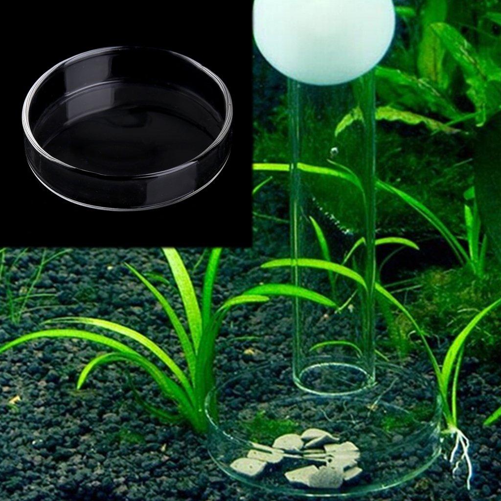 Cuenco para comida de acuario de Runrain para pecera de acrílico: Amazon.es: Jardín