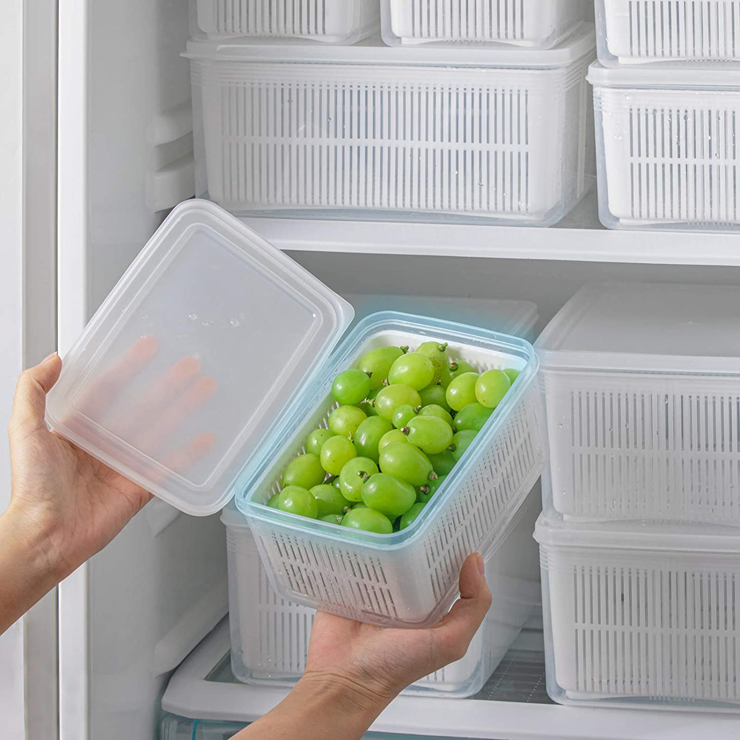 MOPMS Fresh Produce Vegetable Fruit Storage Containers For Refrigerator - Produce saver storage containers - Draining Crisper with Strainers-1.5L, 1PCS