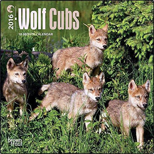 Wolf Cubs 2016 Mini Wall Calendar (7X7)