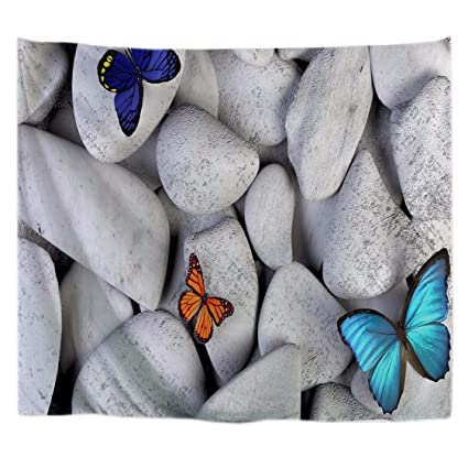 Amazoncom Amonamour White Rocks Stones Colorful Butterfly