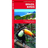 Brazil Birds: A Folding Pocket Guide to Familiar Species (A Pocket Naturalist Guide)