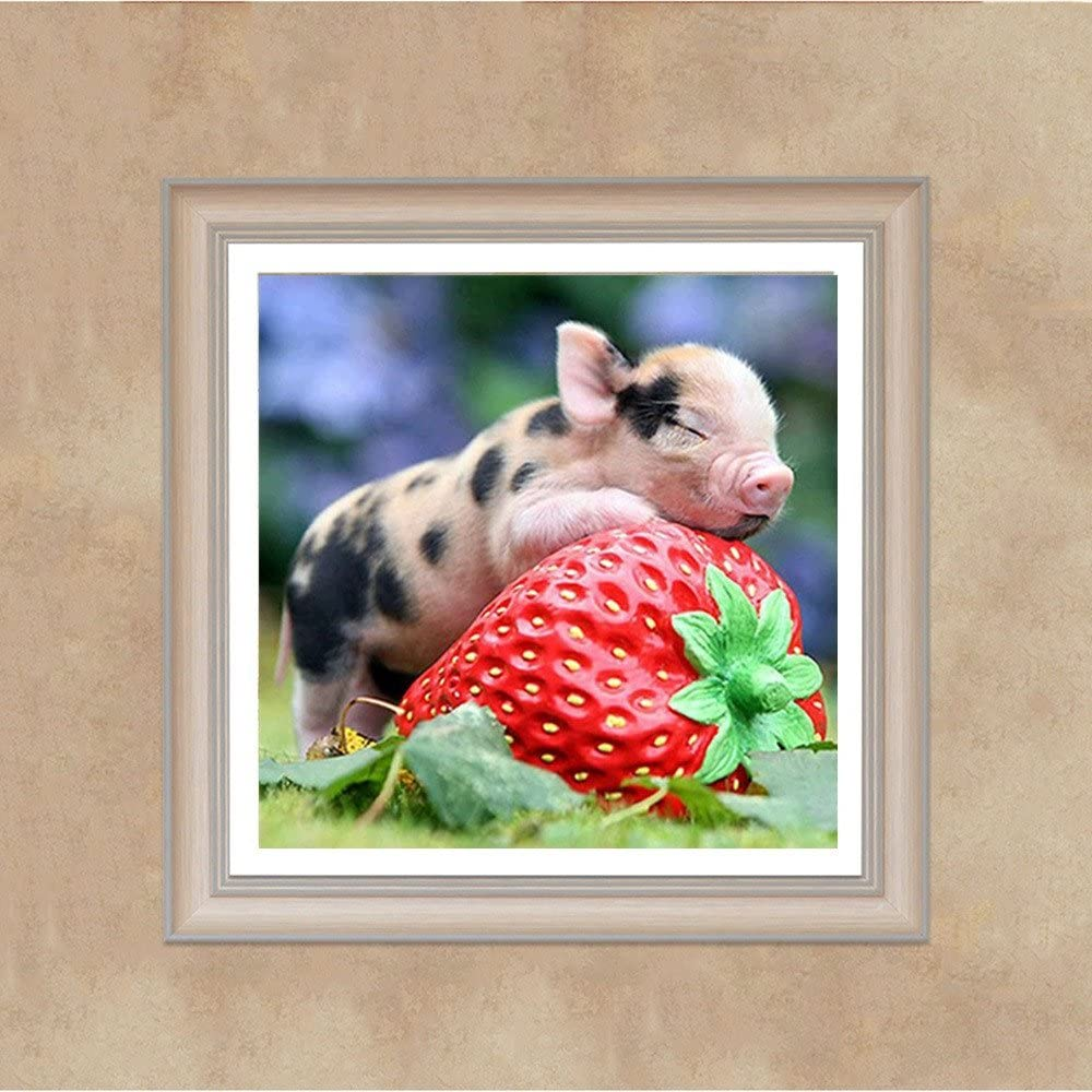 A, 30x30cm Arts Craft Cross Stitch DIY 5D Diamond Art Painting Full Kits Pig/&Strawberry Crystal Rhinestone Embroidery Diamond Painting Kits Home Wall Decor