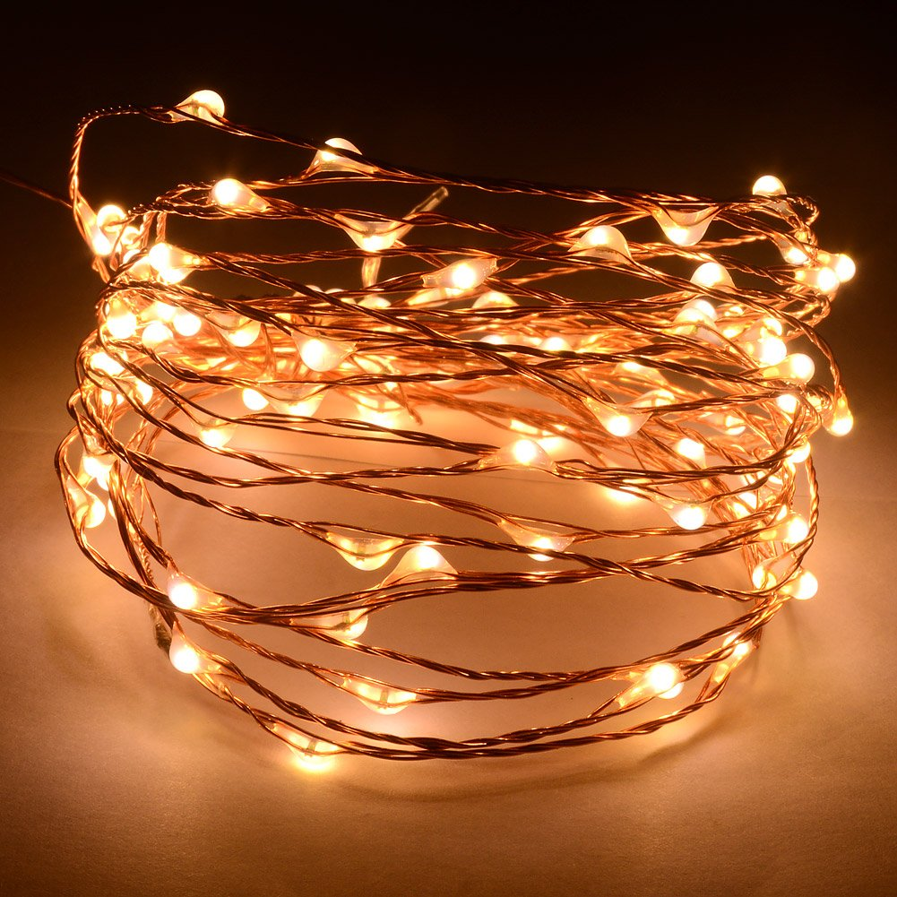 12V DC 5m/16Ft 100 Warm White Micro Drop LED on Copper Wire String Fairy Light For Festival Lighting Christmas Wedding Halloween+Power Adapter Gardening Will