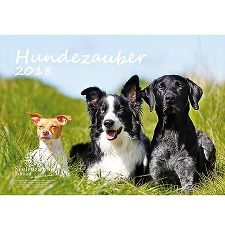 premium-kalender-2018-din-a4-hundezauber-hunde-welpen-tiere-edition-seelenzauber