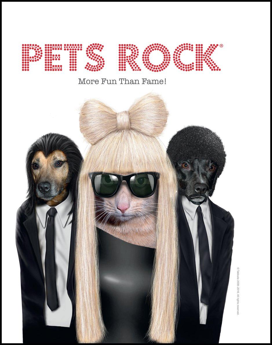 Read Online Pets Rock®: More Fun Than Fame! PDF